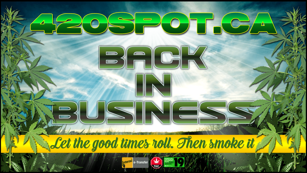 420 SPOT IS BACK! Cannabis