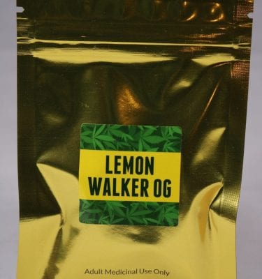 Lemon Walker OG Green Gold Shatter