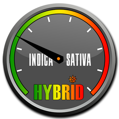 420 HYBRIDS INDICA buy weed online