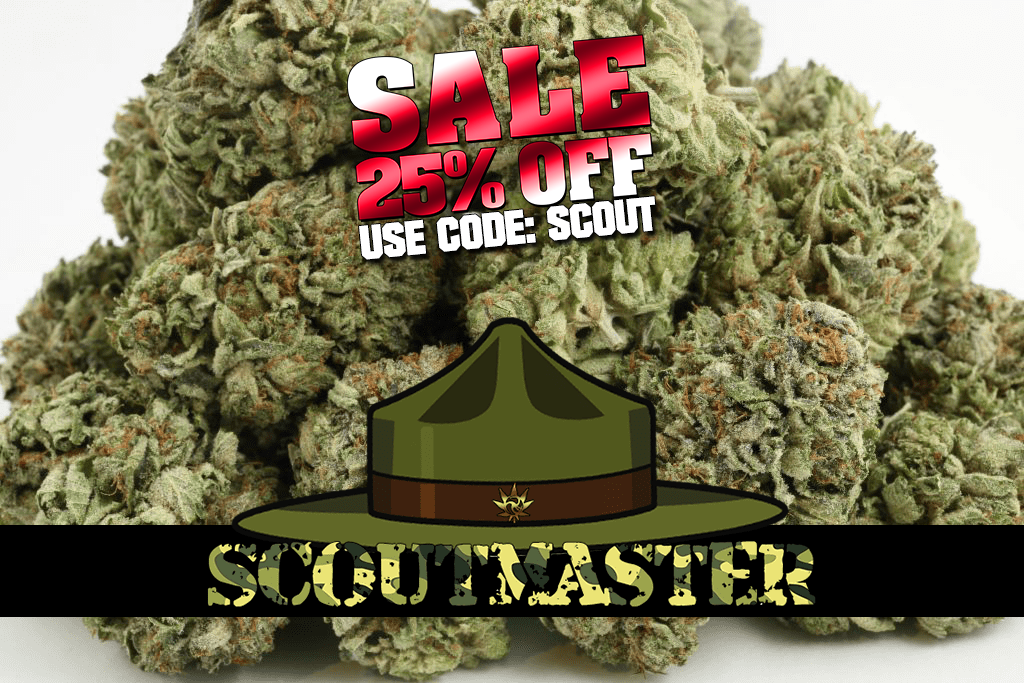 420Spot Summer Sale IV – 25% OFF SCOUTMASTER and MORE!