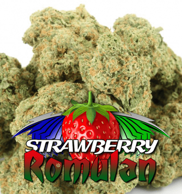 Strawberry Romulan