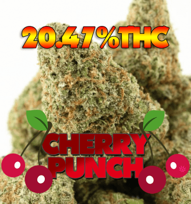 Cherry Punch