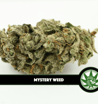 Mystery Weed