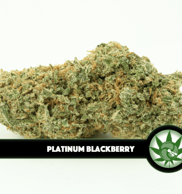 Platinum Blackberry