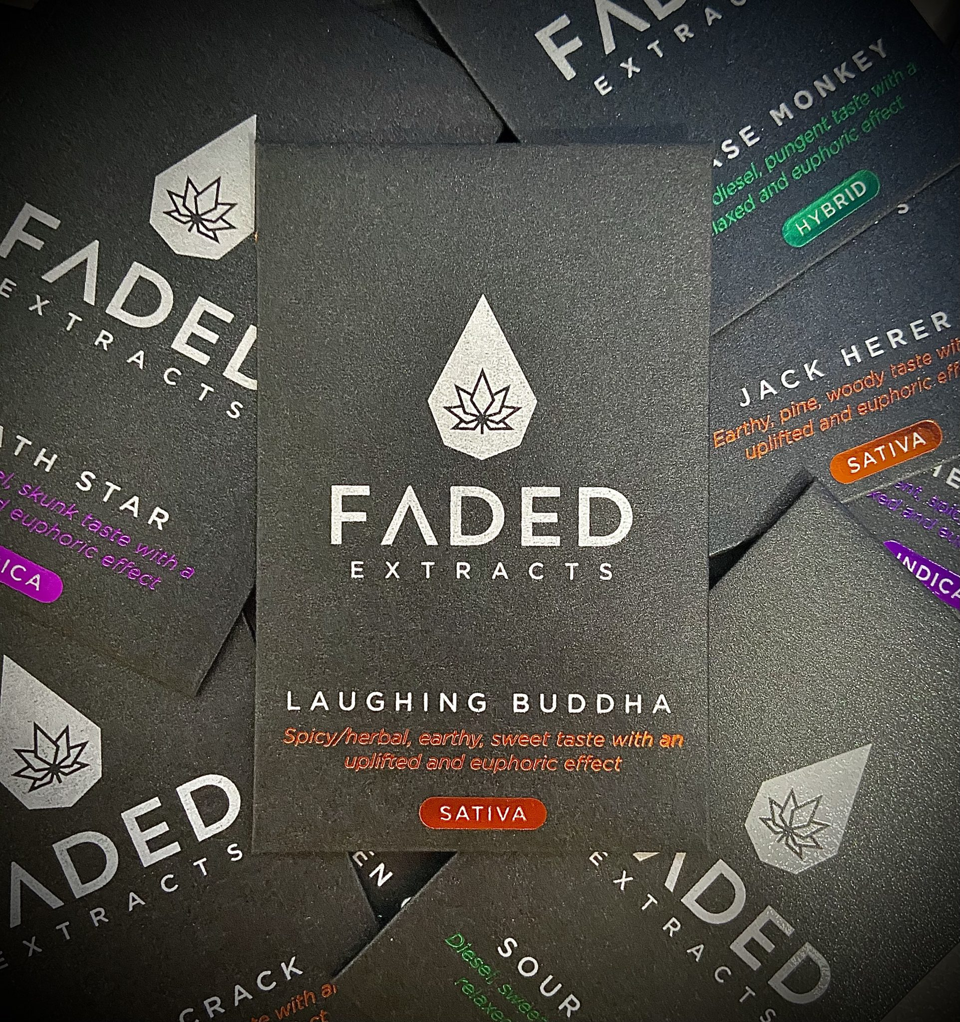 Faded Extracts  – Premium Shatter