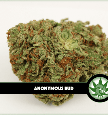 Anonymous Bud