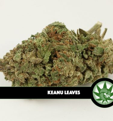 Keanu Leaves (A-list Canadian Outdoor)